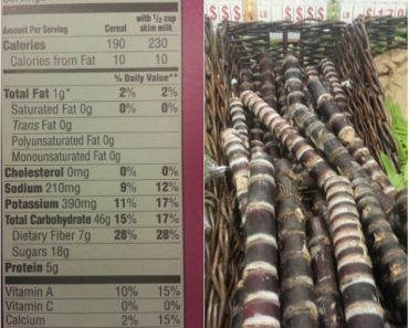 Sugarcane nutrition facts