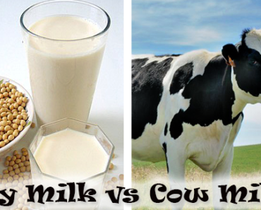 Soy Milk Vs Cow Milk