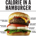 Calories In A Hamburger