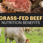 grass fed beef benefits