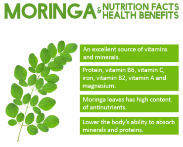 Moringa Nutrition Facts