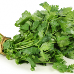 Cilantro Vegetable