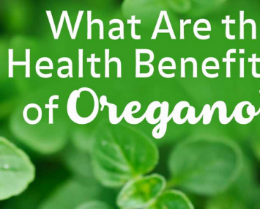 Oregano Herb Benefits