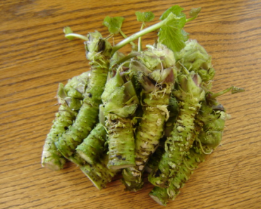 Wasabi Health Benefits