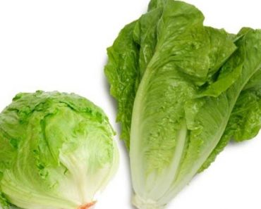Calories in Lettuce