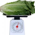 Calories in Romaine Lettuce