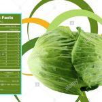 Nutrition Facts of Cabbage